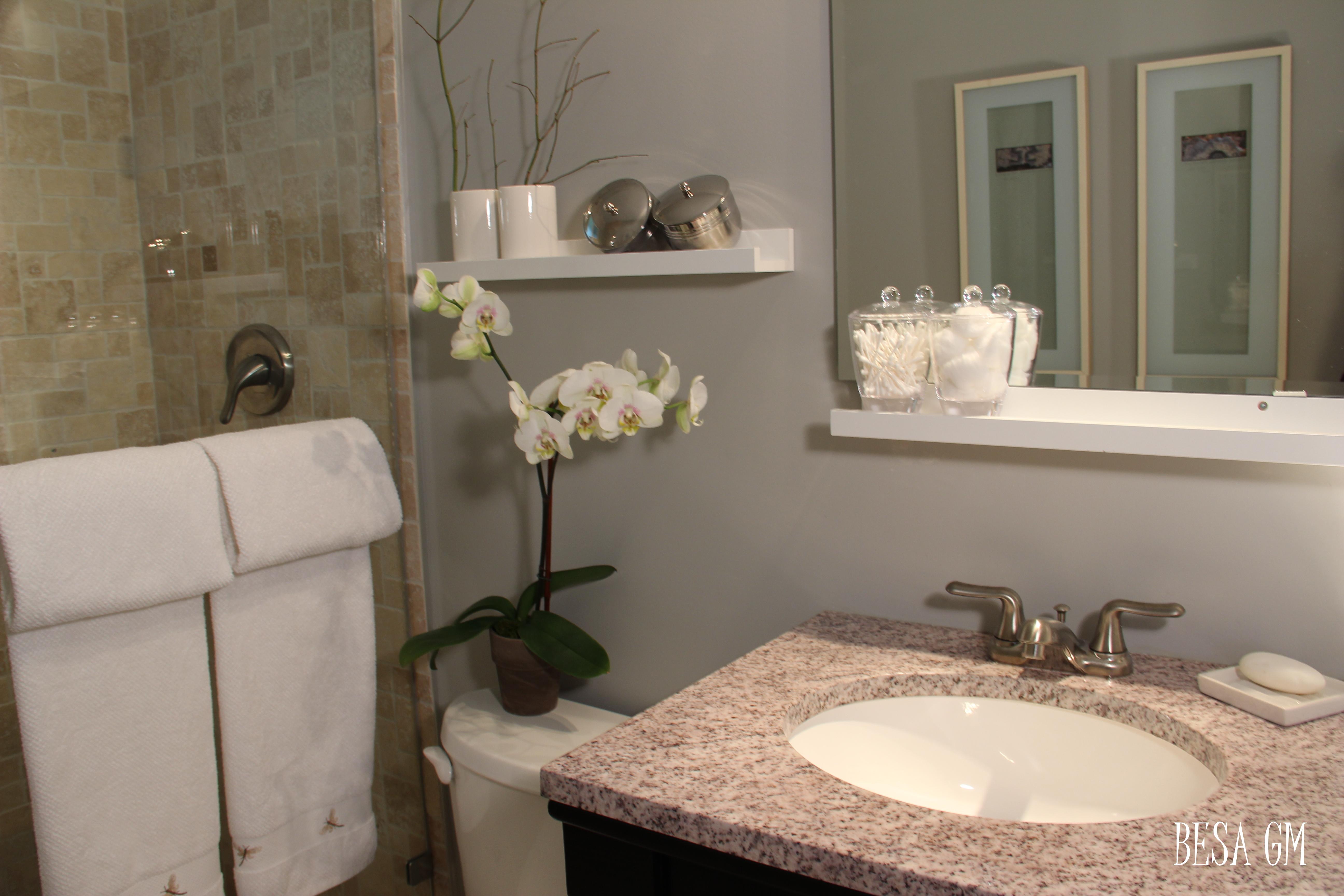 2. Small Bathroom Remodel Idea   BESA GM